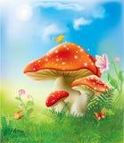 Rote magische Pilze Stockbilder
