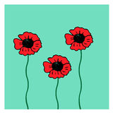 Rote Mohnblume auf dem blauen Hintergrund Stockbilder