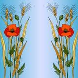 Rote Mohnblume in der blauen Art Stockbild