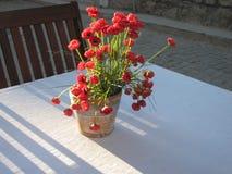 Rote Mohnblumen auf dem Tisch Stockfotografie