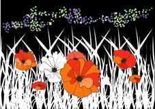 Rote Mohnblumen auf einer Wiese Lizenzfreie Stockfotografie