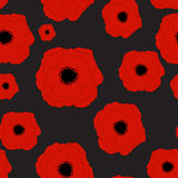 Rote Mohnblumen-Blumen-nahtloser Muster-Hintergrund Stockbilder