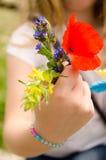 Rote Mohnblumen und andere Feldblumenblumenstrauß Stockbilder