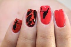 Rote Nägel des Maniküredesigns mit Muster Lizenzfreies Stockbild