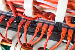 Rote Netzkabel angeschlossen an Schalter lizenzfreie stockfotografie