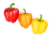 Rote, orange und gelbe Farbe des Paprikas (Pfeffer) Lizenzfreies Stockbild