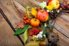 Rote, orange und weiße Beeren des glücklichen Danksagungshintergrundes, Bulle lizenzfreies stockbild