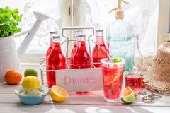 Rote Orangeade in der Flasche mit Zitrusfrucht lizenzfreie stockfotos