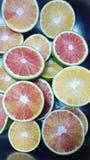 Rote Orangen stockfotos
