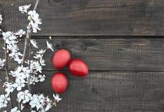 Rote Ostereier auf Holztisch mit Blütenaprikose verzweigt sich T Lizenzfreie Stockbilder