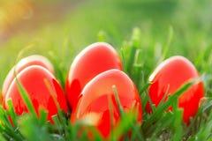 Rote Ostereier im grünen Gras Lizenzfreie Stockfotografie