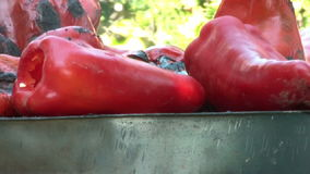 Rote Paprika On Barbecue Close Up stock footage
