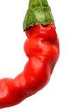 Rote Paprika papper Nahaufnahme. Stockfoto