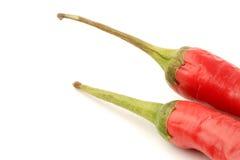 Rote Paprika-Pfeffer Lizenzfreies Stockbild