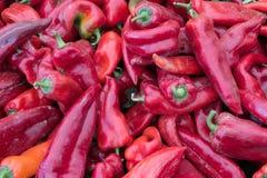 Rote Paprika-Pfeffer-Haufen auf Markt-Stall für Verkauf Lizenzfreies Stockbild