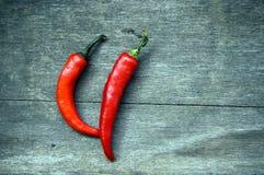 Rote Paprikas Lizenzfreies Stockfoto