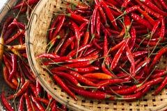 Rote Paprikas im thailändischen Korb lizenzfreie stockbilder