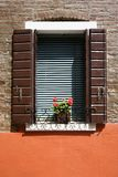 Rote Pelargonien auf Fensterrahmen. lizenzfreies stockbild