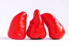 Rote Pfeffer Stockfotos