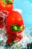 Rote Pfeffer im Wasser Lizenzfreie Stockfotografie