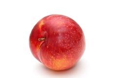 Rote Pflaume. Lizenzfreie Stockbilder