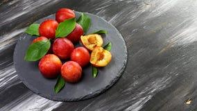 Rote Pflaume trägt auf Niederlassung mit grünen Blättern auf einem runden Schieferbrett ein dunkler Hintergrund Früchte Draufsich stockfotografie