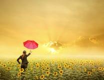 Rote Regenschirm Geschäftsfrau, die im Sonnenuntergang über Sonnenblumenfeld steht Stockfotografie