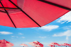 Rote Regenschirme Stockbild
