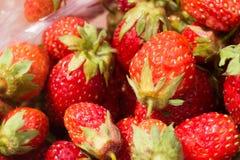 Rote reife Erdbeeren in einer Plastiktasche Lizenzfreie Stockfotos