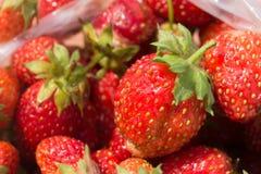 Rote reife Erdbeeren in einer Plastiktasche Stockfotografie