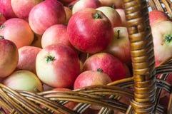 Rote, reife und schöne Äpfel im Korb ernte Stockfotografie