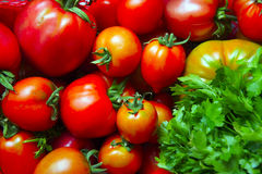Rote, rosa und grüne Tomaten schließen oben Stockfotografie