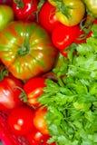 Rote, rosa und grüne Tomaten schließen oben lizenzfreies stockfoto