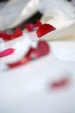 Rote rosafarbene Blumenblätter auf weißem Tuch Lizenzfreie Stockfotos