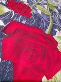 Rote rosafarbene Fotokunstliebe stockfoto