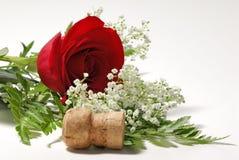 Rote Rose stockfotos