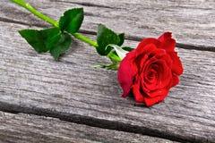 Rote Rose auf altem hölzernem Liebeskonzept Lizenzfreie Stockfotografie