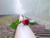 Rote Rose auf Eisenbahn Stockfotos