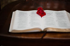 Rote Rose in der offenen Bibel Lizenzfreie Stockbilder