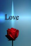 Rote Rose und die Wort-Liebe Lizenzfreie Stockfotografie