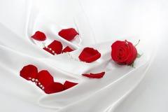 Rote Roseblumenblätter über Seide Lizenzfreie Stockfotos