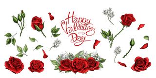 Rote Rosen übergeben Farbsatz der gezogenen Illustrationselemente stock abbildung