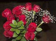 Rote Rosen angezeigt mit einem schwarzen Hintergrund stockbilder