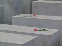 Rote Rosen auf Betonblock-symbolischen Gräbern Lizenzfreie Stockbilder