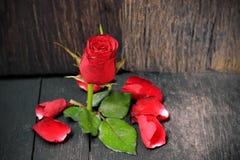 Rote Rosen auf dem alten Bretterboden lizenzfreies stockfoto