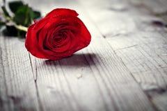 Rote Rosen auf Holz stockfoto