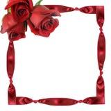 Rote Rosen auf Rahmen von einem Band mit Knoten Lizenzfreies Stockbild