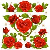 Rote Rosen-Auslegungelemente lizenzfreie abbildung