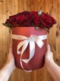 Rote Rosen in den weiblichen Händen lizenzfreie stockfotografie