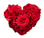 Rote Rosen in der Herzform lokalisiert auf Weiß lizenzfreie stockfotos